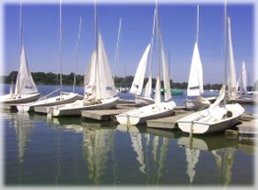 Assorted small boats and yachts